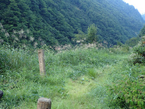 大笠山登山口