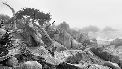 Photo: Pescadero Point, 17-Mile Drive