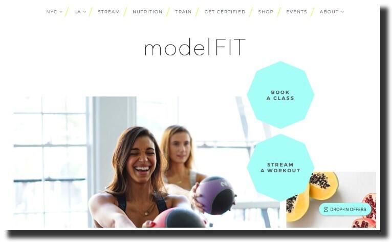 The ModelFIT website design