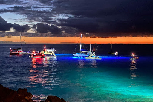Just loved the colors in the water and in the sky at twilight as the Night Dive with the Manta Rays got underway.