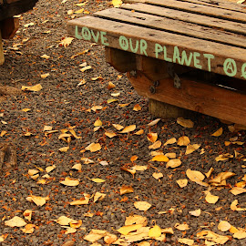Love our Planet by Andrew Greydanus - City,  Street & Park  City Parks ( love, planet, bench, park, hawaii )