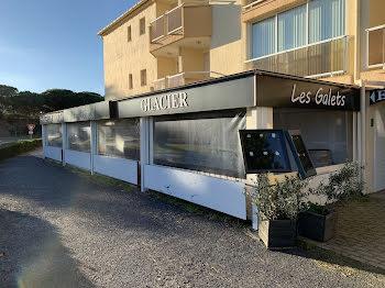 locaux professionels à Saint-Cyprien (66)