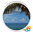 Beach Palm Tree Live Wallpaper icon