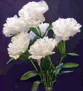 květiny - náhled