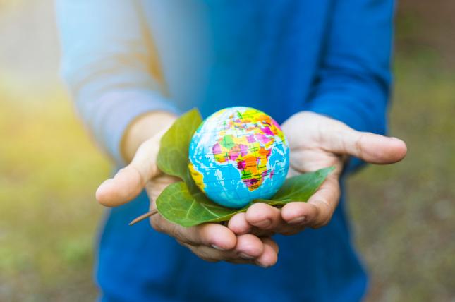 A sustentabilidade como valor