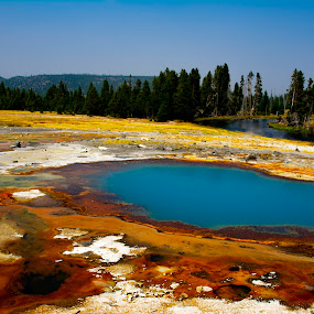 Yellowstone National Park 1 by Chuck Vinson - Landscapes Waterscapes ( rivers, usa, bacteria, nature, springs, wyoming, water, yellowstone, beautiful, geysers, steam, travel, hot-springs, park, photography, landscape, colorful,  )