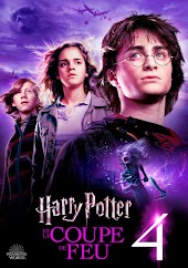 Harry Potter et la coupe de feu (VF)