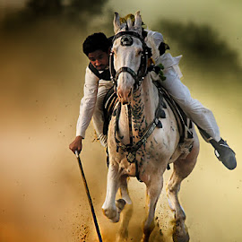 Got it by Abdul Rehman - Sports & Fitness Other Sports ( horseback, natural light, pakistan, national geographic, horse, dust, natural, rural, rural sports )