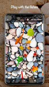 Fish On Screen 3D Wallpaper 4