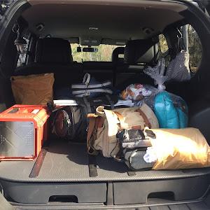 エクストレイル TNT31のカスタム事例画像 ナッカさんの2020年04月20日12:30の投稿