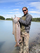 Photo: One of the first second run king salmon caught by Alaska Drift Away Fishing. This 40 plus pound king salmon was caught on the pristine Kasilof river in early July 2010.