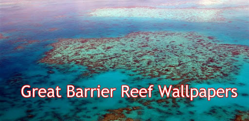 Wallpapers Great Barrier Reef Images Apps Bei Google Play
