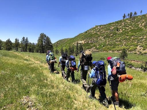 Boy Scouts, Girl Scouts suffer huge declines in membership