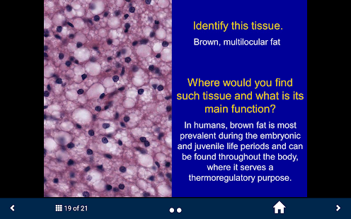 Histology Complete- SecondLook- screenshot thumbnail