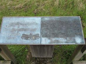 Photo: Brailleborden in het park