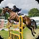 Horse Jumping: Horseback Riding 2017 (game)