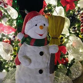 Mr Snowman by Karen Carter Goforth - Public Holidays Christmas ( winter, decoration, snowman,  )