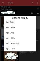 screenshot of Video downloader master