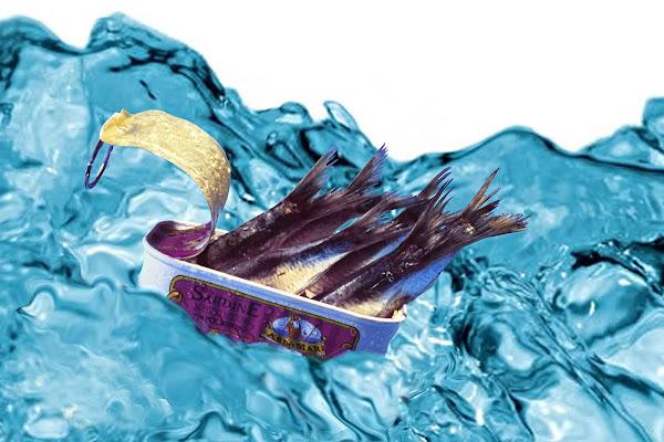 Come appena pescate di Scaletta