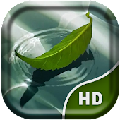 Water Leaf  Live Wallpaper