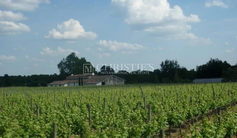 Vignoble Saint-Martin-du-Bois