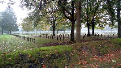 Photo: De Duitse militaire begraafplaats (Deutsche Kriegsgräberstatte) is een begraafplaats te Kattenbos in de Belgische gemeente Lommel. Hier rusten Duitse soldaten die gesneuveld zijn tijdens de Tweede Wereldoorlog. Daarnaast ligt hier een kleiner aantal soldaten begraven die tijdens de Eerste Wereldoorlog zijn omgekomen. Het is, wat betreft de Tweede Wereldoorlog, het grootste Duitse soldatenkerkhof buiten Duitsland in West-Europa. Per jaar trekt dit kerkhof tussen de 25.000 en 30.000 bezoekers.