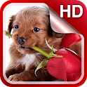 Puppies Live Wallpaper HD icon