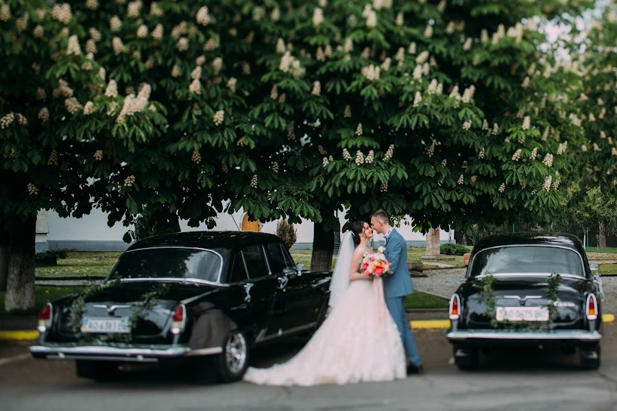 Svatební fotograf Aleksandra Shulga (photololacz). Fotografie z 19.06.2017