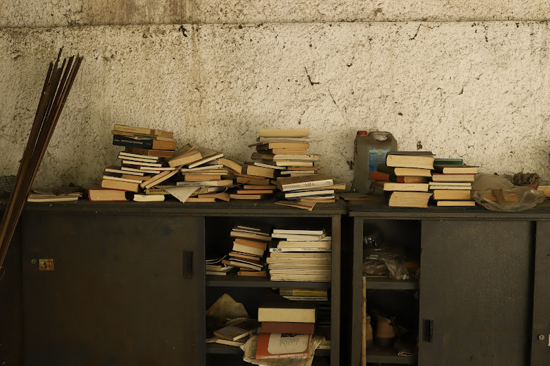 Il riposo dei libri di Swanmartina