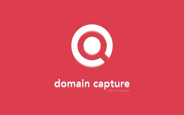 domain capture