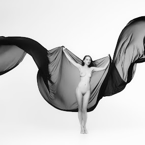 Fly by Carl0s Dennis - Nudes & Boudoir Artistic Nude ( studio, nude, fly,  )