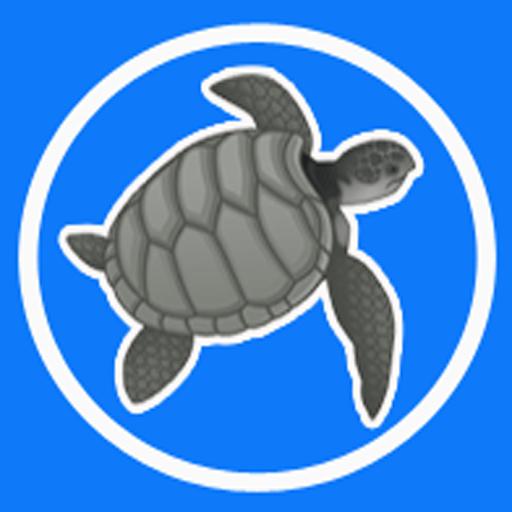 Tortoises Inc avatar image