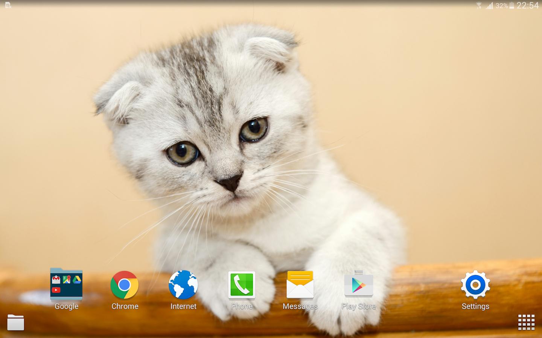 Kucing Wallpaper 4k Apl Android Di Google Play