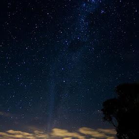 Chasing Lovejoy ∞ Kilcoy, QLD - Australia by Jason Asher - Landscapes Starscapes ( kreutz sungrazer, c 2011 w3, landscape, universe, astronomy, terry lovejoy, nightscape, milky way, lovejoy, kreutz, astro, comet, sky, sungrazer, stars, amateur astronomy, astrophotography, night, comet lovejoy, night sky, galaxy )