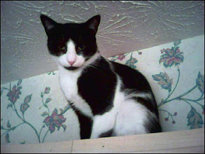 Photo: Mia (2006)