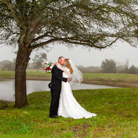Kissing at the old Oak Tree by Matthew Chambers - Wedding Bride & Groom ( bride, love, redhead, wedding dress, country, pond, foggy, groom, tuxedo, beauty, tree, water, white, kissing, grass, oak, wedding )