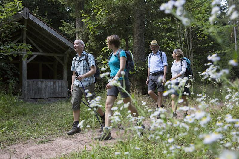 Unterwegs in der Natur genießen die Wanderer die Entspannung