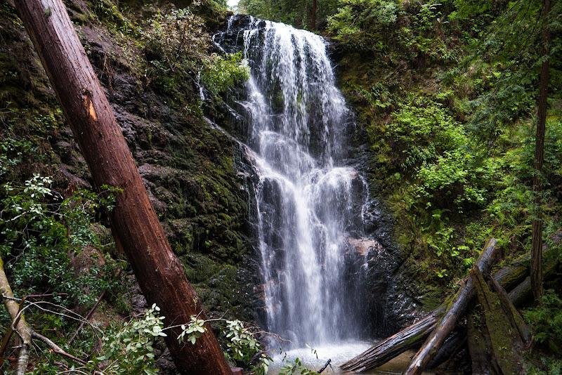 Berry Creek Falls 2016