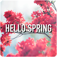 Spring Wall.. file APK for Gaming PC/PS3/PS4 Smart TV