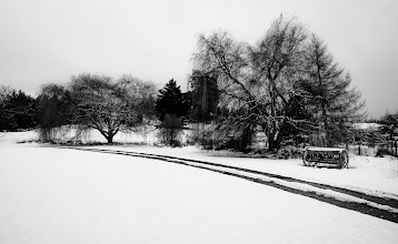 Photo: Winter Path, New Zealand  Here's a photo I just took a few minutes ago after driving home from the Winter Festival here in Queenstown. I saw this off the side of the road, so I tookout my snowboats and hiked over to a good spot to get a photo. #WinterFestival #Queenstown