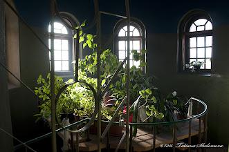 Photo: Лестничная площадка  в храме Петра и Павла в Петродворце
