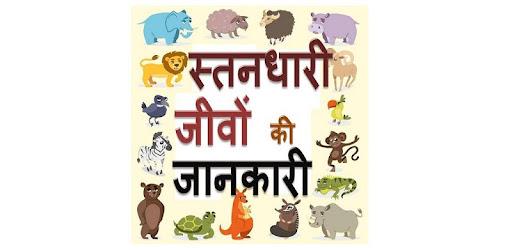 Приложения в Google Play – Mammals : Animal Encyclopedia ...