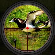 Fly Bird Hunting