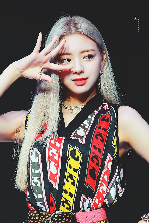 blondi 15