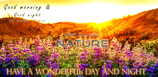 Good Morning Good Night Nature Apps On Google Play
