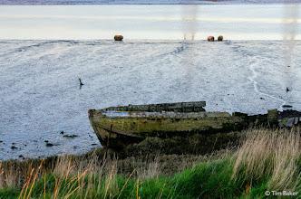 Photo: Teynham to Swale