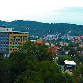 by Alexandru Lupulescu - Buildings & Architecture Homes (  )