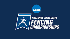 College Fencing thumbnail