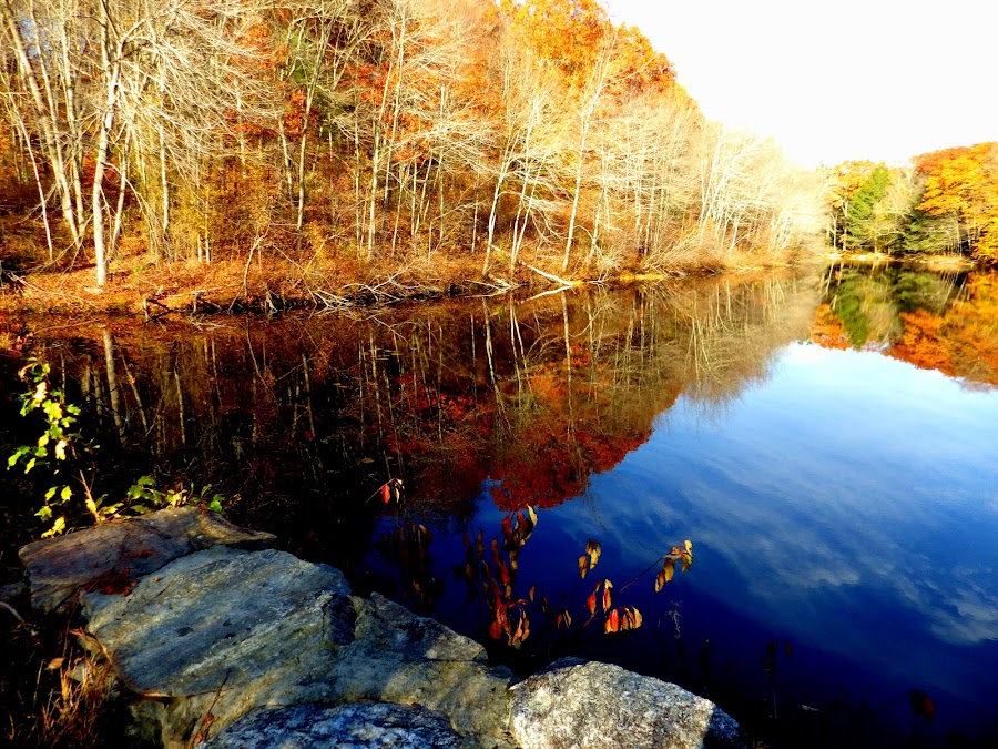 New England Fall by Martin Stepalavich - City,  Street & Park  City Parks (  )