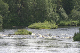 Photo: luonto on kaunis, Kutsajoki